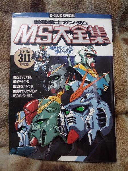MS_daizensyu.jpg