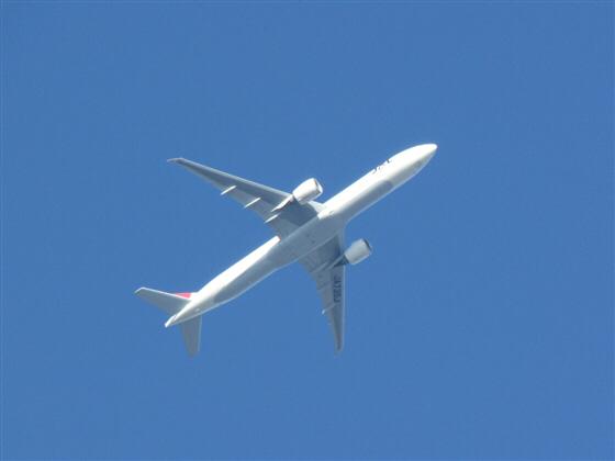 airplane091206.jpg