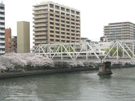 sakuranomiya01.JPG