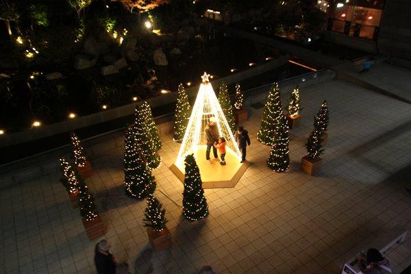 2014_12_23_tree_01.jpg