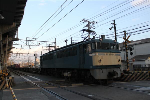 hoppoukamotsusen_1633.jpg