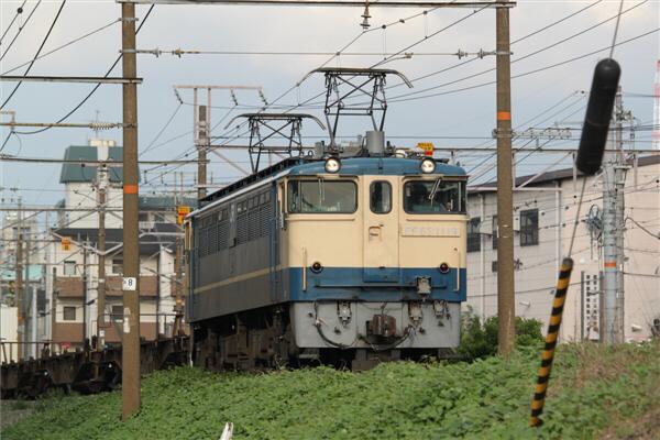 hoppoukamotsusen_2072.jpg