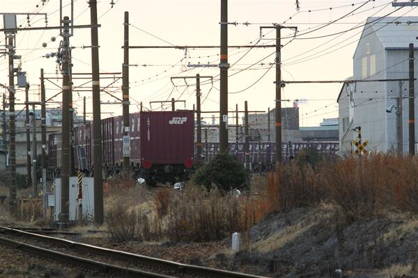 hoppoukamotsusen_3304.jpg