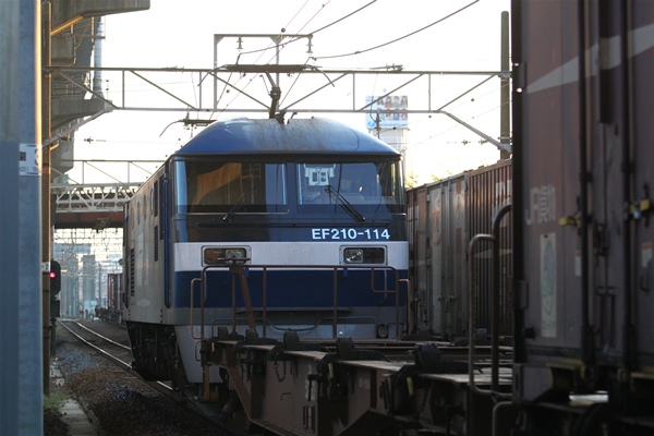 hoppoukamotsusen_3582.jpg