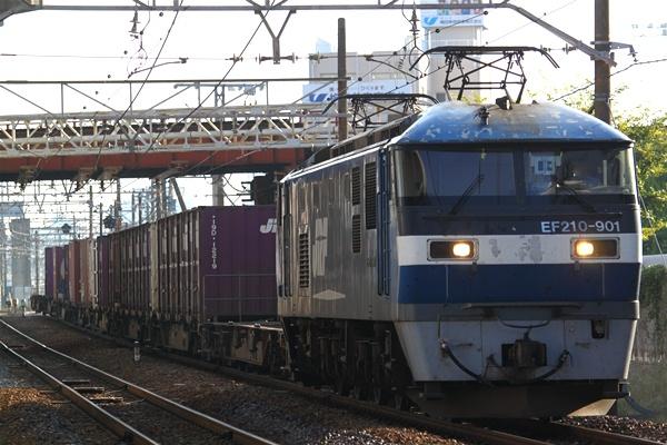 hoppoukamotsusen_3593.jpg
