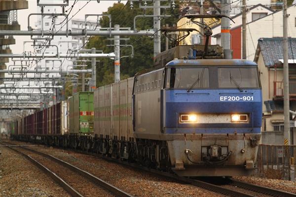 hoppoukamotsusen_3782.jpg