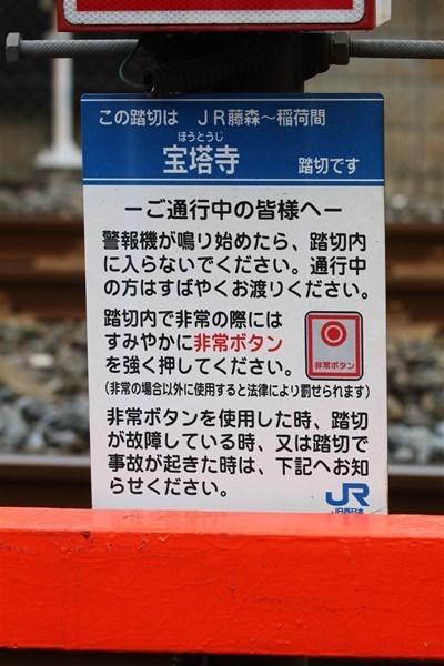 narasen_31.jpg