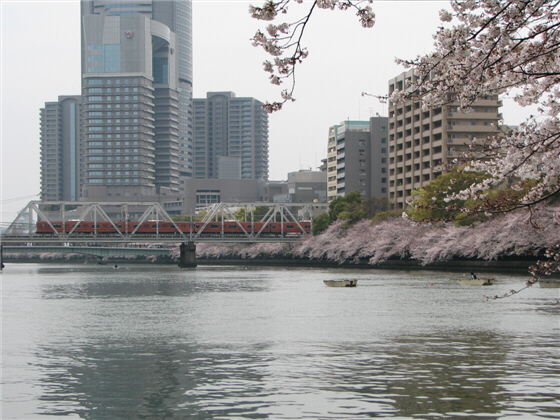 sakuranomiya_11.jpg