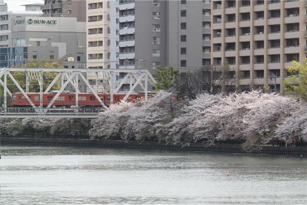 sakuranomiya_12.jpg