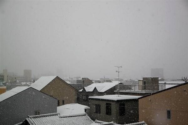 snow20140214.jpg