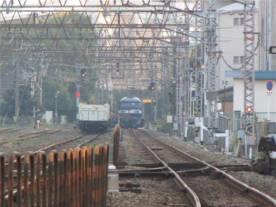 umedakamotsueki_1705.jpg