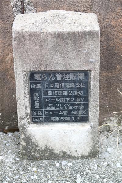 umedakamotsueki_2285.JPG
