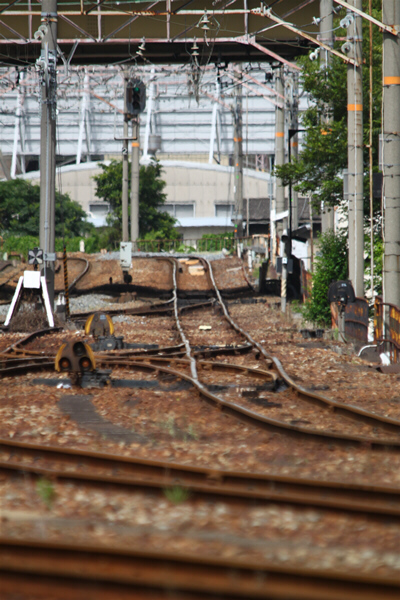 umedakamotsueki_2525.jpg