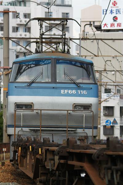 umedakamotsueki_2526.jpg