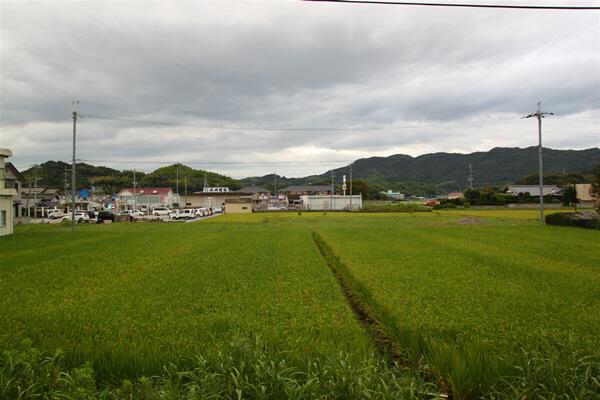 wakayama_73.jpg