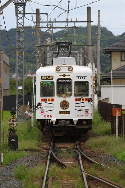 wakayama_75.jpg