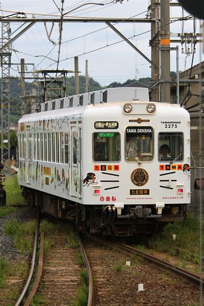 wakayama_76.jpg